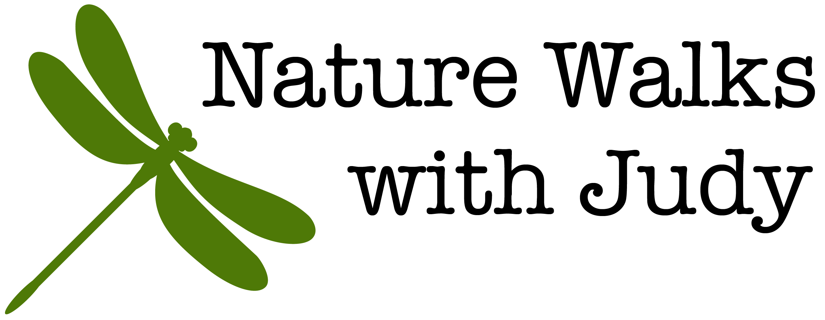 Nature Walks with Judy logo